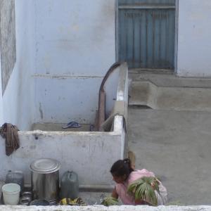 Indie, 2005 r.